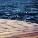 木材を「水中で乾燥」させる方法とは?