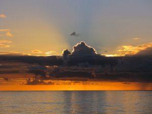 海の恵み,山の恵み